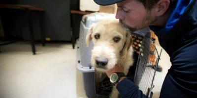 Ellos lo llevaron al veterinario para que se recuperase. Foto:Team Peak Performance/Facebook