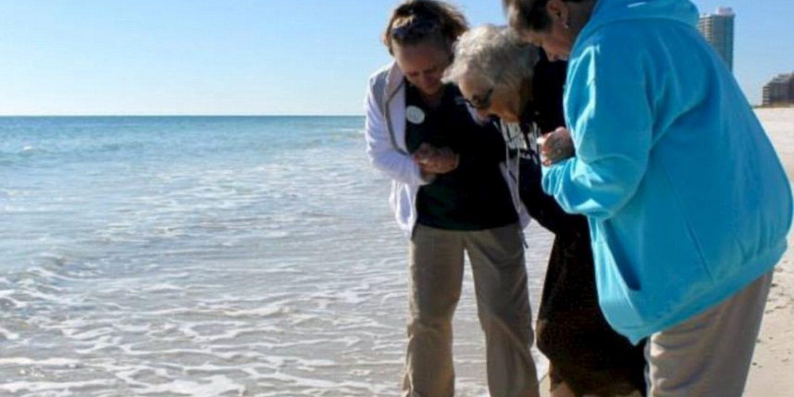 Nunca tuvo ni tiempo ni dinero para viajar a la playa. Foto:Perdido Beach Resort