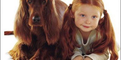 FOTOS: ¿Los perros se parecen a sus dueños?