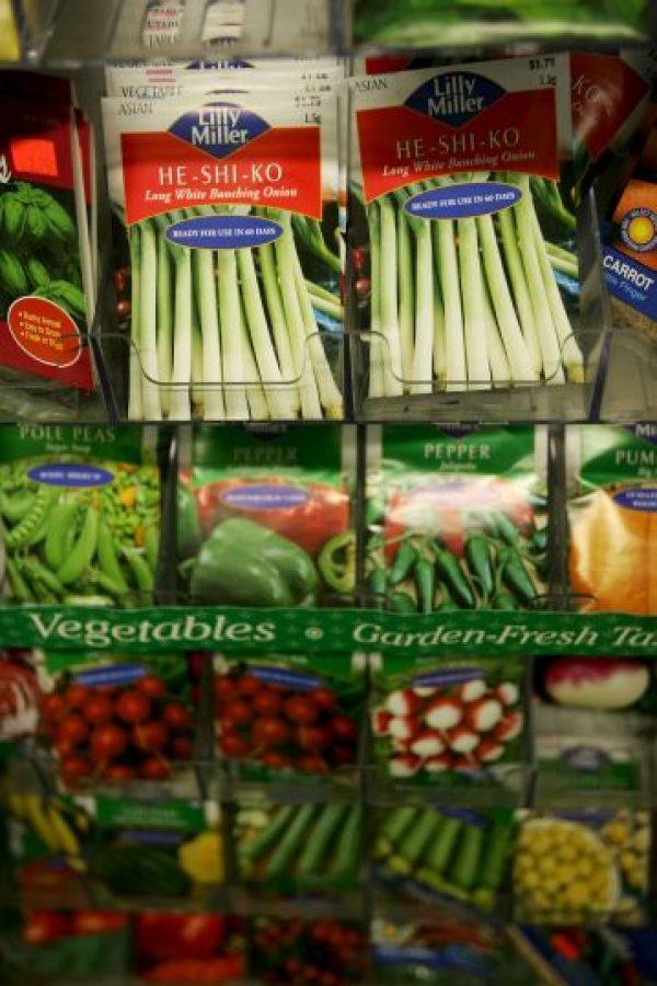 Consumir alimentos funcionales con alto contenido en estanoles presentes en los vegetales. Foto:Getty Images