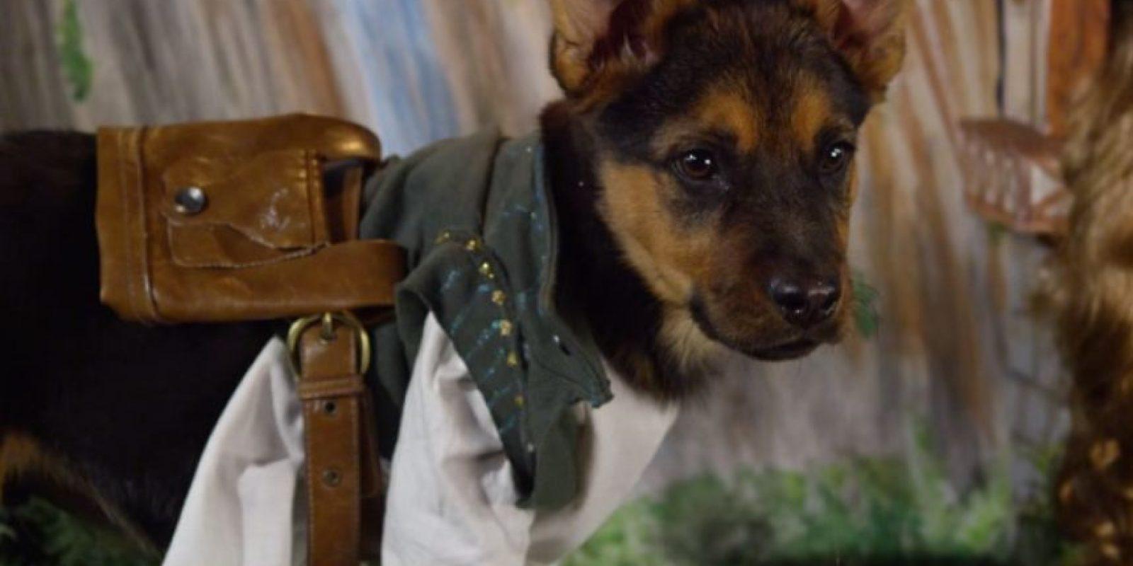 """Flynn Rider de """"Enredados"""" Foto:Oh My Disney"""