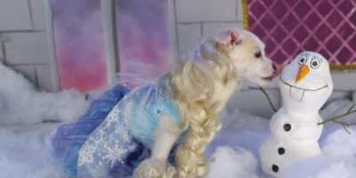 "Elsa de ""Frozen"" Foto:Oh My Disney"