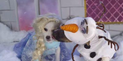 """Elsa y Olaf de """"Frnzen"""" Foto:Oh My Disney"""