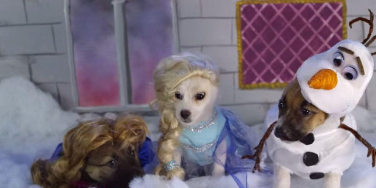 """Anna, Elsa y Olaf de """"Frozen"""" Foto:Oh My Disney"""