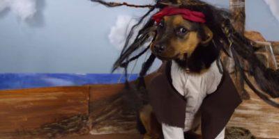 Jack Sparrow Foto:Oh My Disney