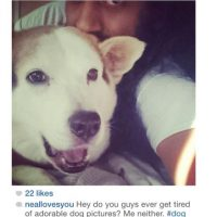 Amor hacia las mascotas Foto:Instagram