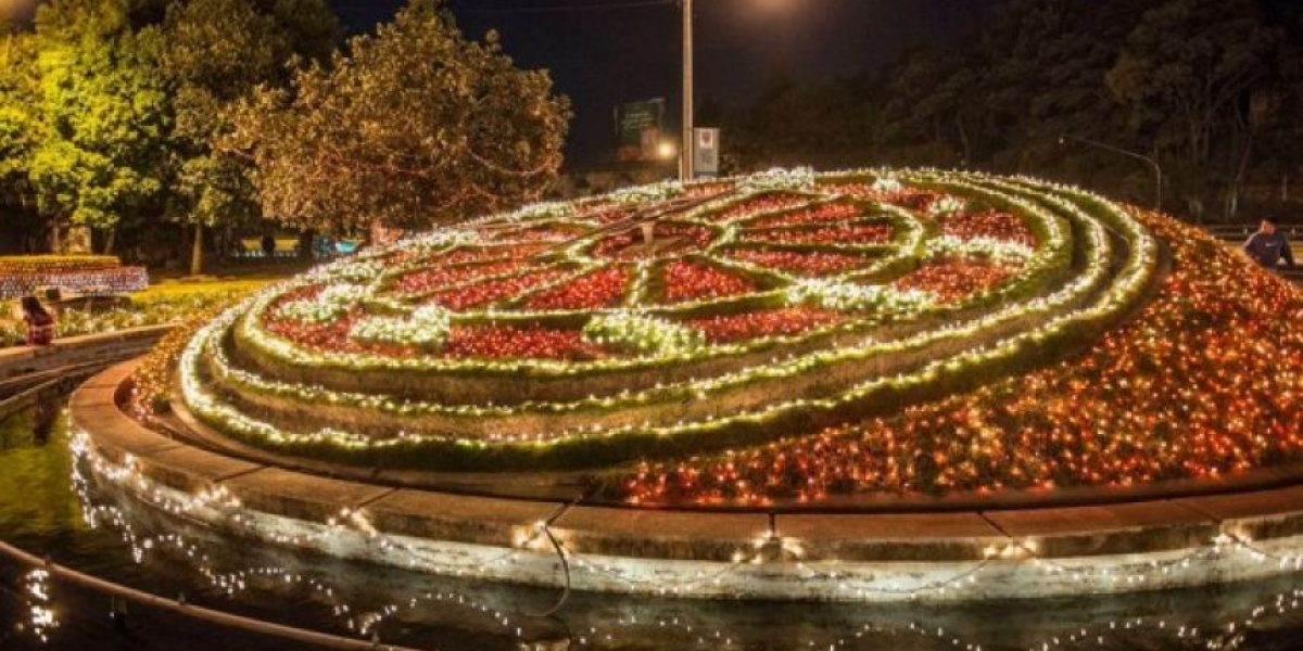 Fotos: Megapaca ilumina el Reloj de Flores