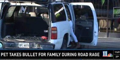 El perro se cruzó en el tiroteo para que su familia no fuese dañada Foto:WXIA