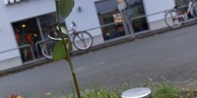 Estudiante muere al defender adolescentes que eran acosadas