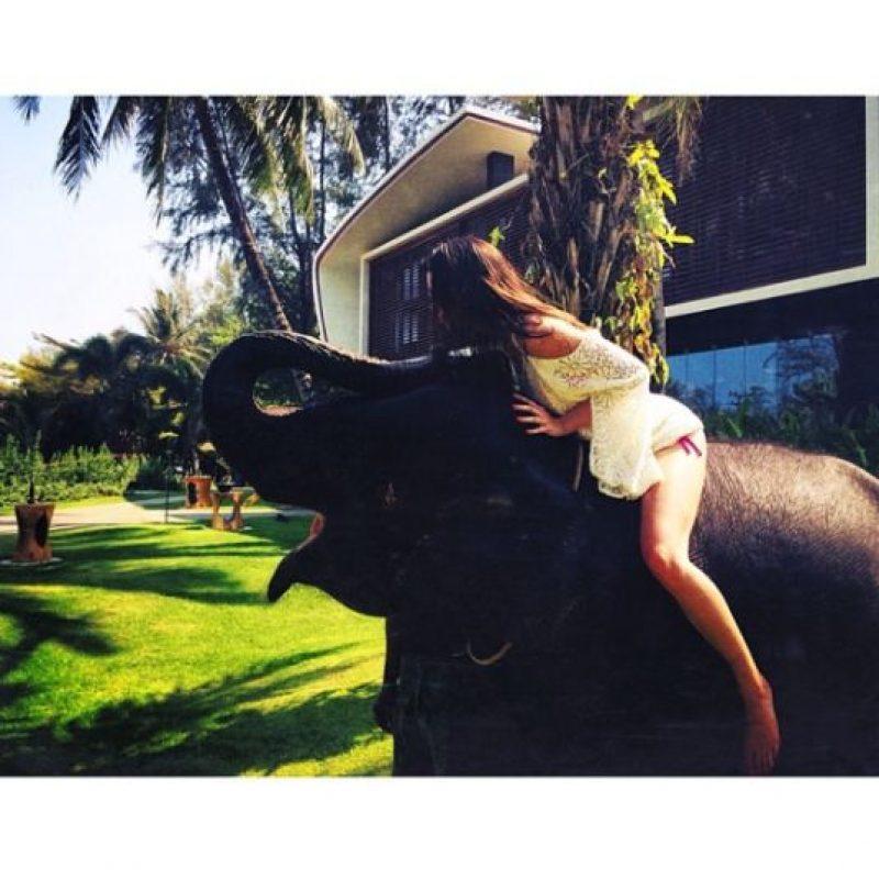 Kendall Jenner Foto:Instagram/Kendall Jenner
