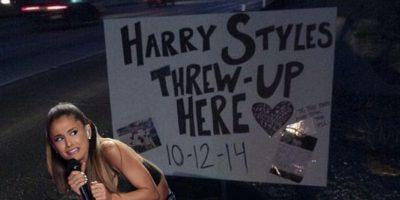 En el monumento al vómito de Harry Styles Foto:Bustle.com