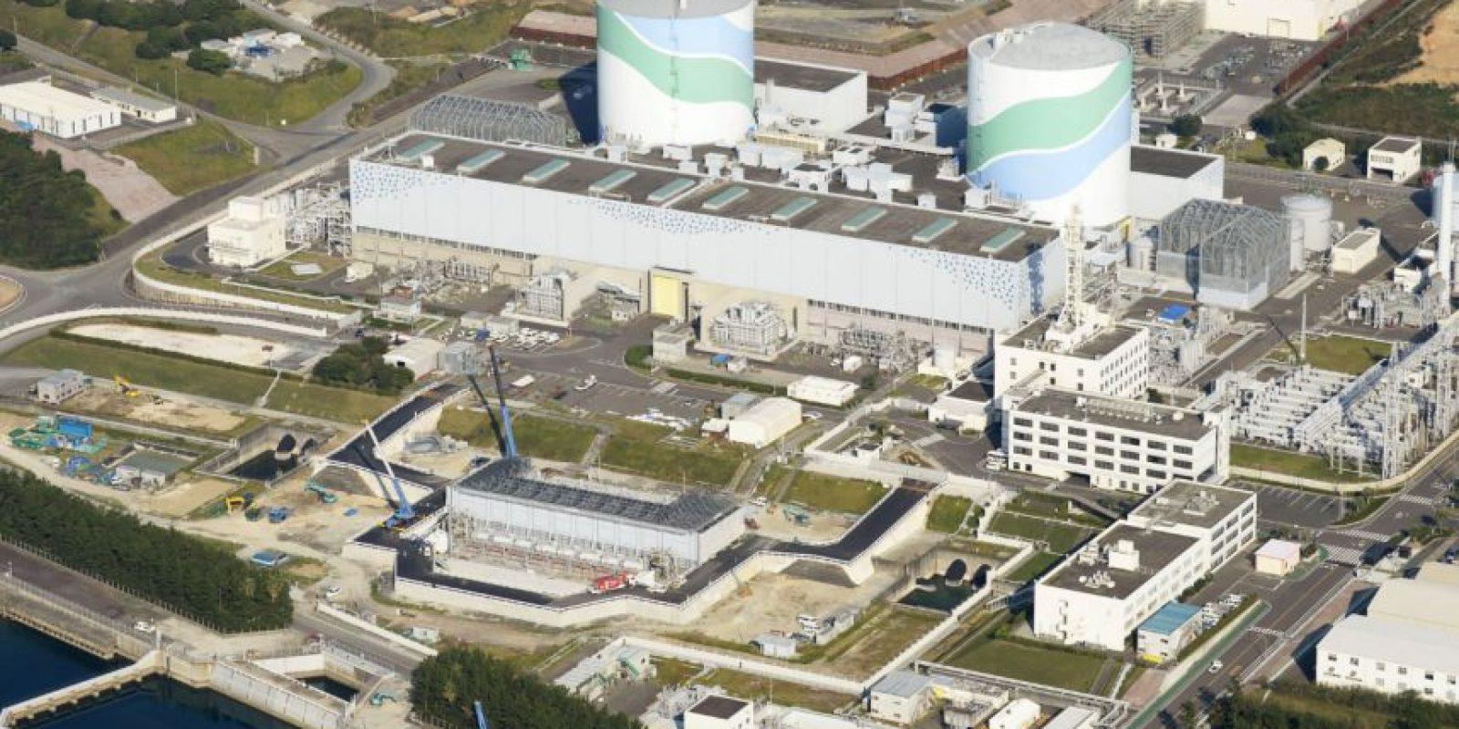 El desastre de Fukushima también afectó los océanos. Foto:AP