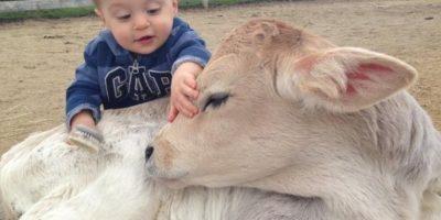Este bebé humano y el ternerito. Foto:Imgur