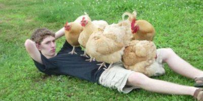 Sexy con las gallinas. Foto:Imgur