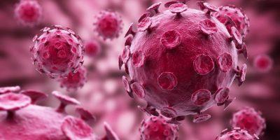 OMS: Virus del ébola se queda en fluidos seminales tras superar la enfermedad