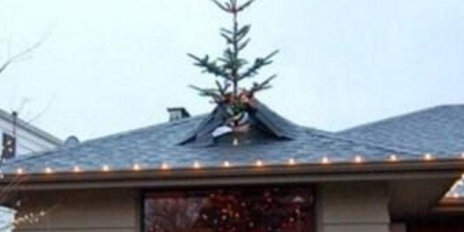 No pudieorn elegir otro árbol, por eso deicidieron destruír el tejado. Foto:Know Your Meme
