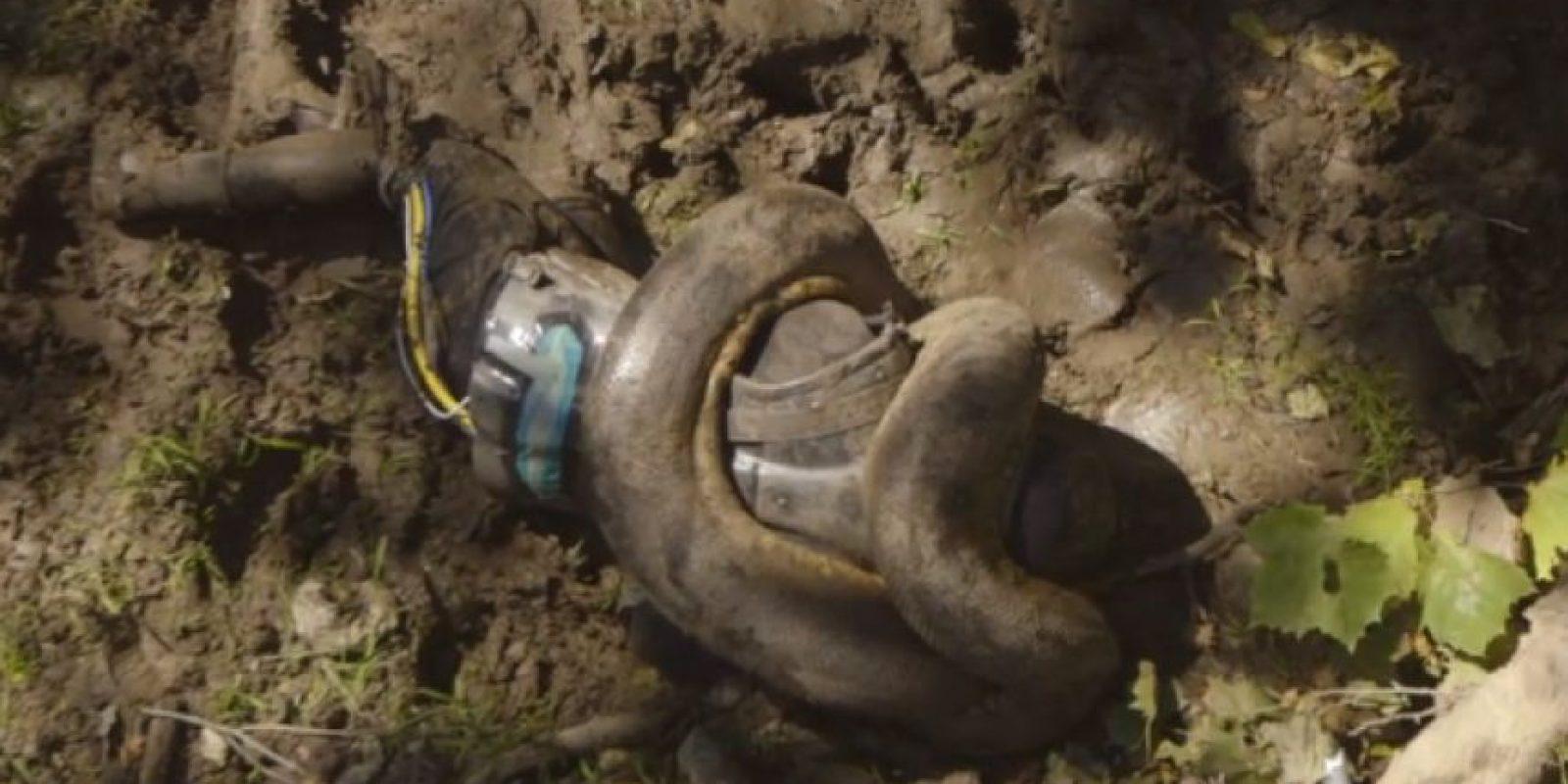 El investigador Paul Rosolie intentó ser devorado vivo por una anaconda, pero la serpiente no lo quiso comer Foto:Discovery