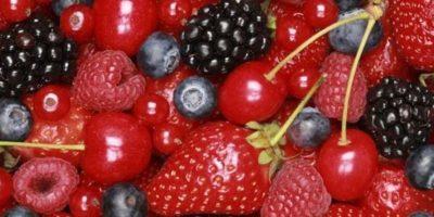 """3. """"Hay que comer muchas frutas y verduras y mantenerse alejado de la comida procesada, las grasas y las barbacoas"""", informó Sabagh. Foto:Pixabay"""