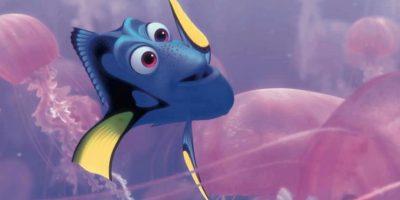 La continuación de la aventura submarina llegará en junio de 2016. Ambientada en las costas de California, abordará la búsqueda de la olvidadiza pez cirujano por su familia, al lado Nemo y Marlin. Foto:Facebook/Pixar