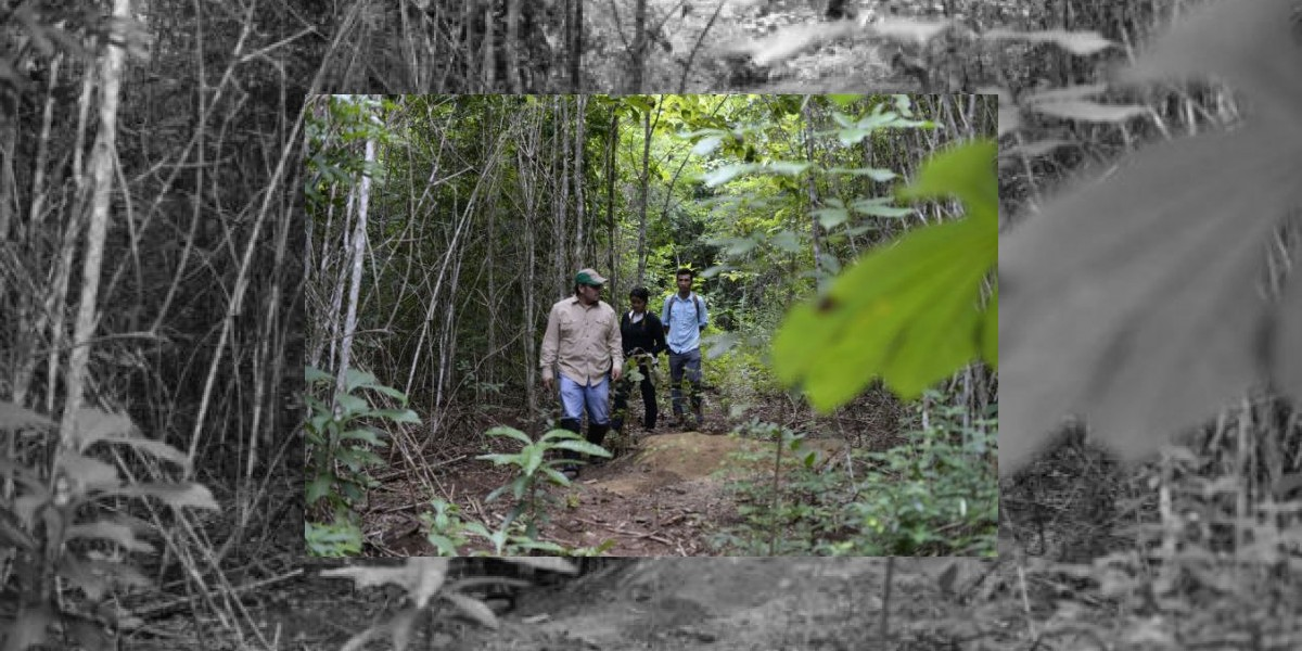 ONU advierte crisis humanitaria en Centroamérica por sequía