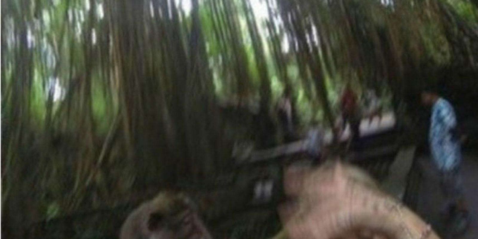 El mono no es feliz junto a ella. Foto:Reddit