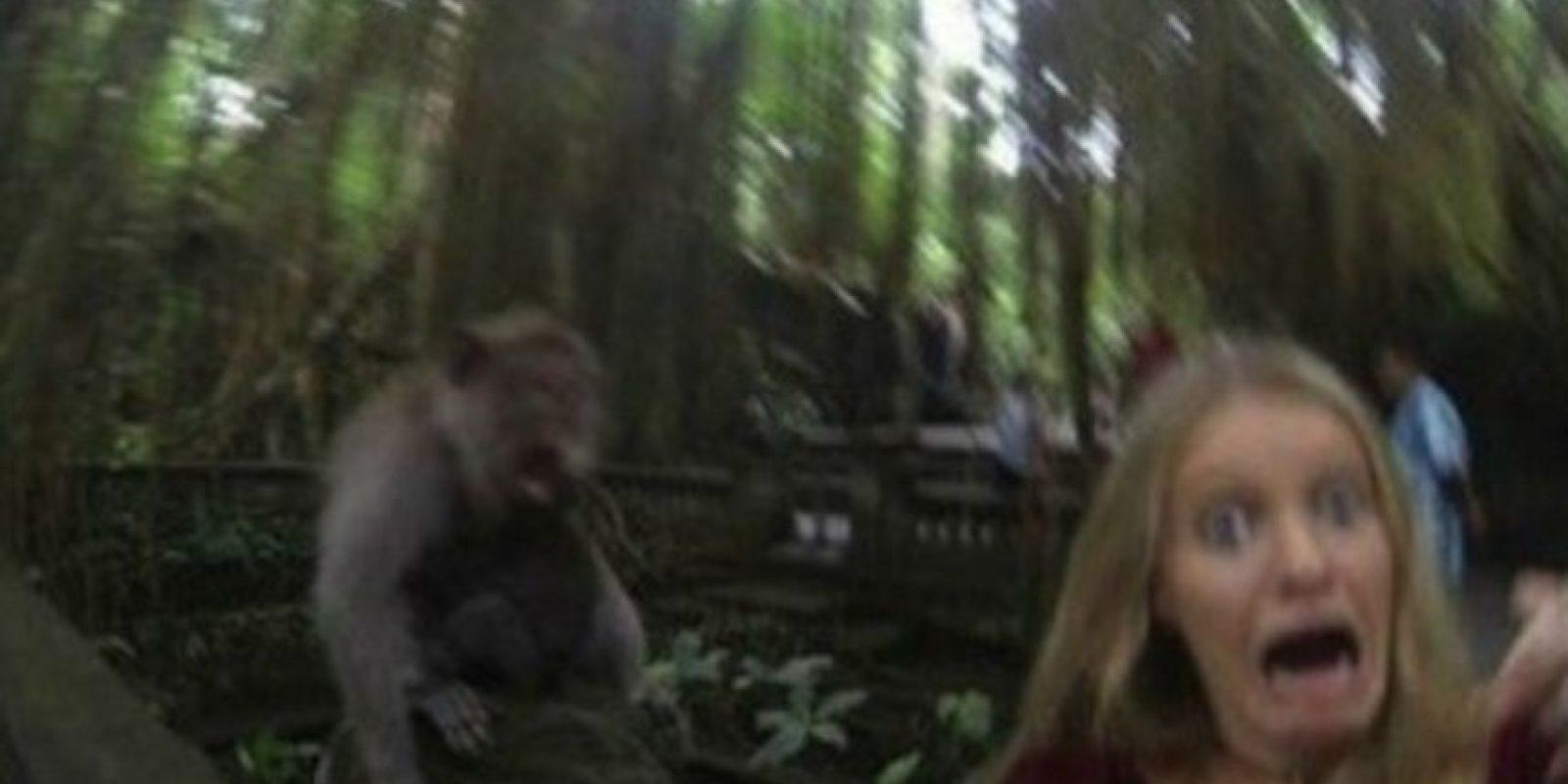 """Esta mujer es la muestra viral de lo que puede pasar cuando se quieren tomar """"selfies"""" al estilo de Animal Planet Foto:Reddit"""