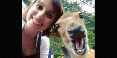 Ternuritas. Foto:Funny Pics Lol