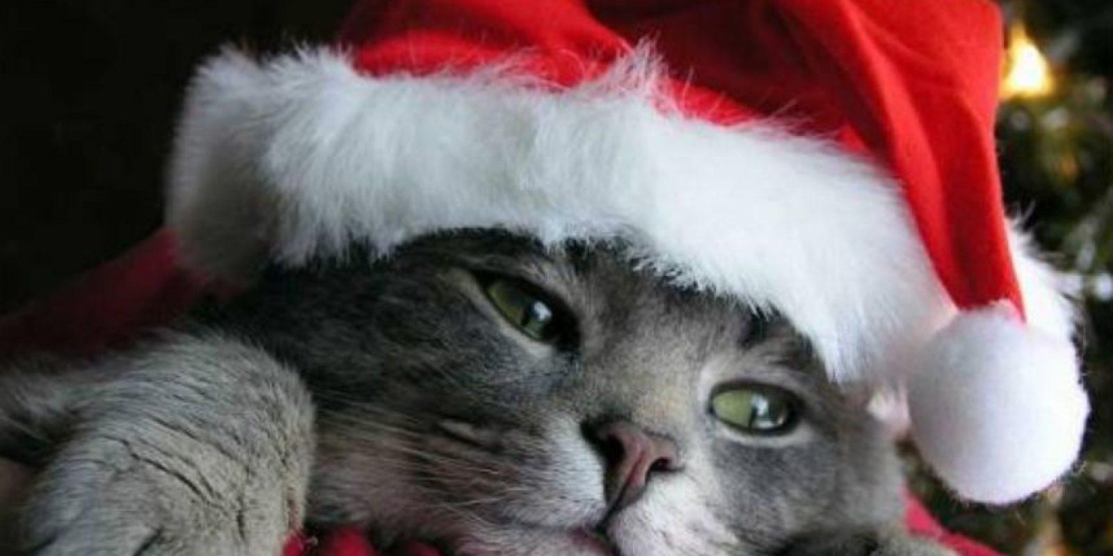 Tal vez no ha llegado el verdadero Santa a su casa Foto:Know Your Meme