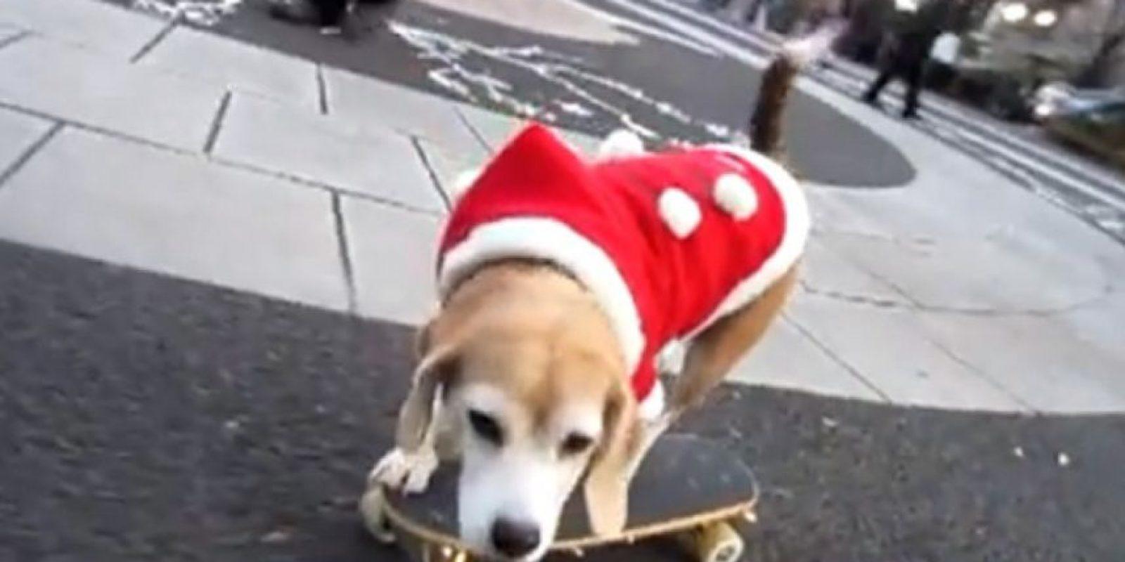 De Santa y en patineta ¡Cool! Foto:Tumblr.com/Tagged/masctoas-santa-claus