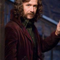 Sirius Black, rebelde, padrino de Harry, su mentor y condenado injustamente en Azkaban. Foto:Warner Bros