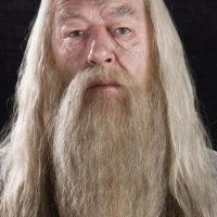 Dumbledore fue uno de los pilares en los que se sostuvo Harry para luchar contra Voldemort. Fue su guía y uno de los más grandes magos que se enfrentó al nefasto ser. Foto:Warner Bros
