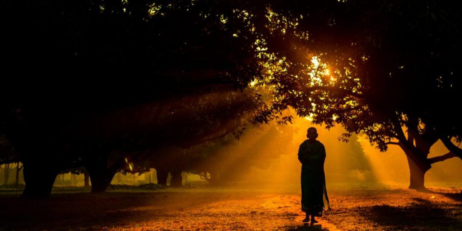 Un monje hindú camina durante una mañana brumosa de invierno en un jardín de mangos en Dinajpur. Foto:Agencias