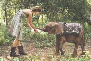 Bebiendo leche Foto:Tumblr.com/tagged-elefantes