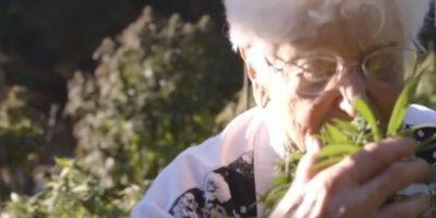 """""""Nonna marihuana"""": La abuela de 90 años que cocina con esta droga"""