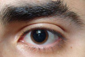 Foto:Tumblr.com/tagged-cejas