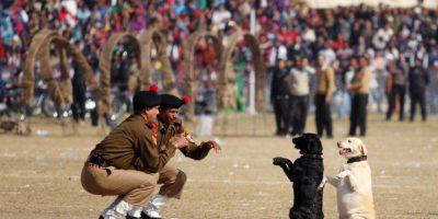 Foto:Alok Pathania / AFP