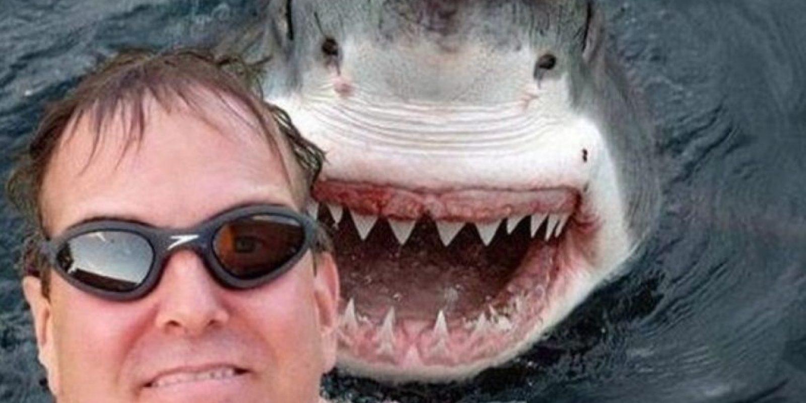 ¿A punto de ser devorado por un tiburón? Foto:3psbyseeker