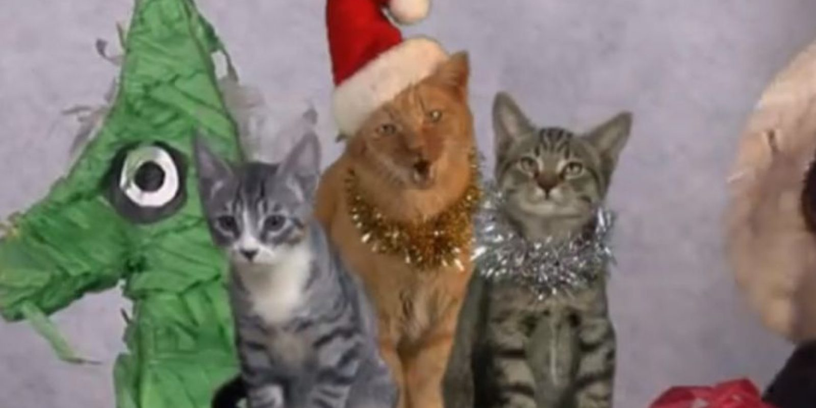 """1. """"Meowy Navidad"""" Foto:Vía Youtube"""