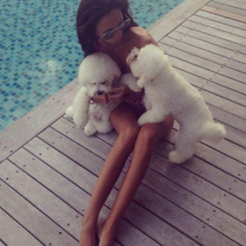 """Eso sí, depende de cada animal porque algunos perros """"se desesperan"""" cuando sienten que están solos. Foto:Tumblr.com/Tagged-perros"""