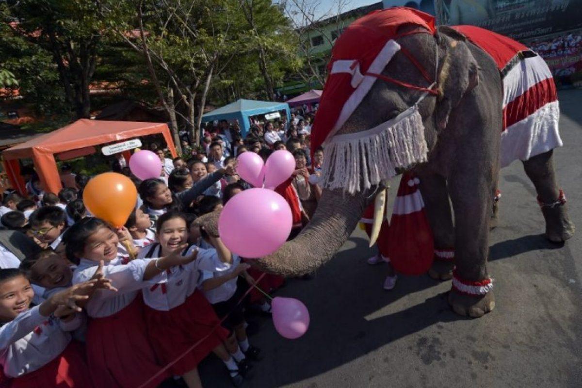 Tailandia Foto:AFP