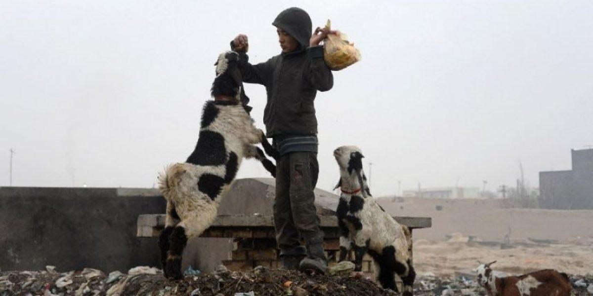 Afganistán: ¿Por qué miles celebran su cumpleaños el 1 de enero?