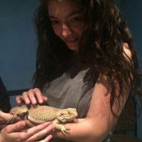 Le gustan los animales Foto:Instagram/Lorde