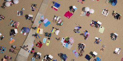 Varias personas toman sol en la playa de Wannsee, cerca de Berlín, el 20 de julio 2014. Foto:Publinews