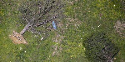 Árboles tirados después del paso de un tornado que golpeó Vilonia, Arkansas el 28 de abril 2014. Foto:Publinews