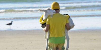 Su cabra va a donde él vaya Foto:Know Your Meme