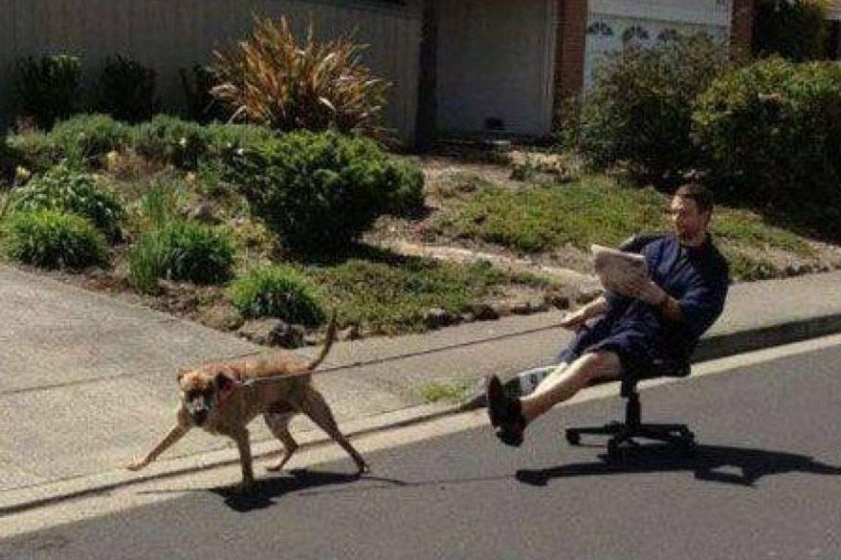 ¡Así se hace, buen perro! Foto:Know Your Meme
