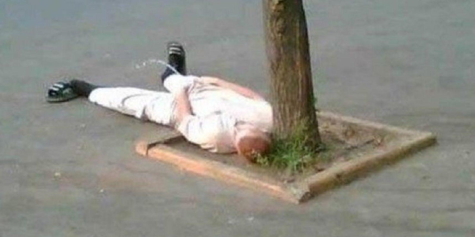 ¡No quiero levantarme ni para hacer pipí! Foto:Know Your Meme