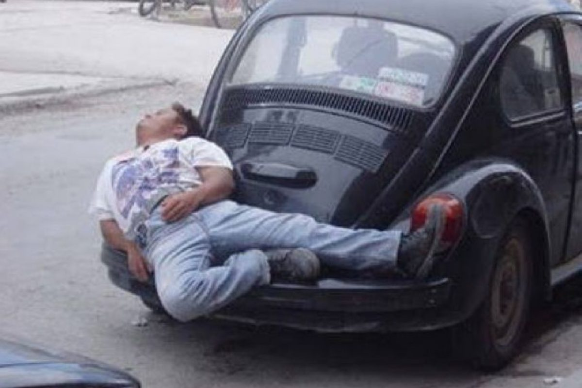 Cualquier lugar es bueno para dormir Foto:Know Your Meme