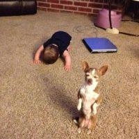 ¿Qué le haría al bebé? Foto:Funy Pics