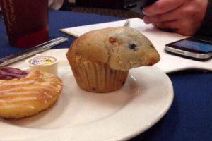 Rata-muffin para alegrar tu corazón. Foto:Reddit